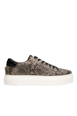 Ted Sneaker