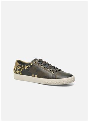 Sneakers Dazed by Ash