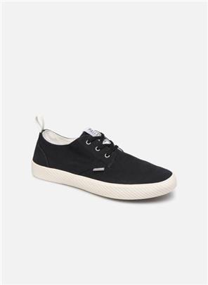 Sneakers Pallaphoenix Ox Cvs by Palladium