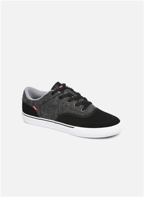 Sneakers Tribe by Globe