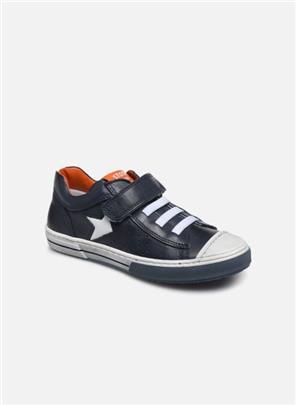 Sneakers Cisto by Stones and Bones