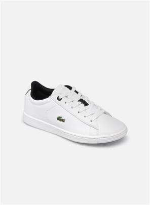 Sneakers Carnaby Evo 0120 2 by Lacoste