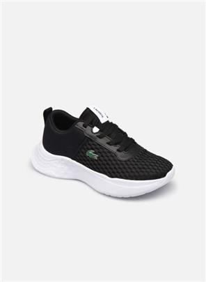Sneakers COURT DRIVE 0120-1 by Lacoste