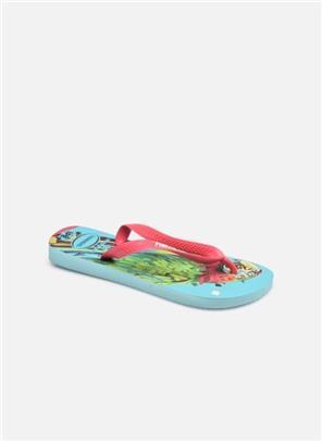 Slippers Ipe by Havaianas