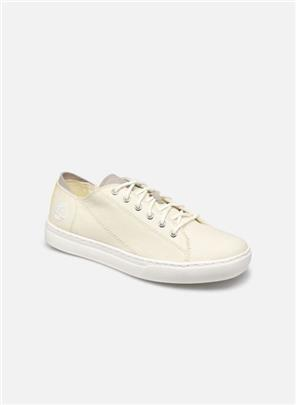 Sneakers Adv2.0 Cup L/F Oxford by Timberland