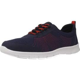 Lage Sneakers Clarks STEP ALLENABAY