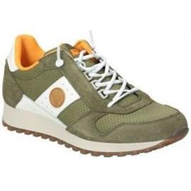 Lage Sneakers Kangaroos ZAPATOS 6570-76 CABALLERO KHAKI