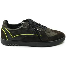 Lage Sneakers Floris Van Bommel HEREN sneaker 16242 bruin