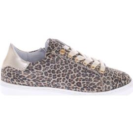 Sneakers Gattino G1219 Panterprint Goud