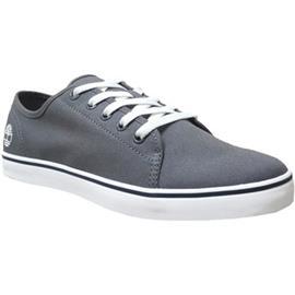 Lage Sneakers Timberland Skape park oxford