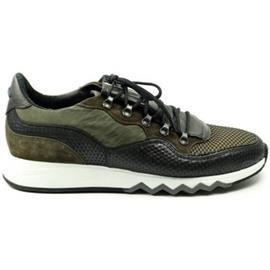 Lage Sneakers Floris Van Bommel HEREN sneaker 16093 groen