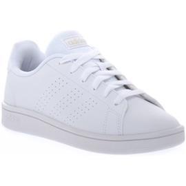 Lage Sneakers adidas ADVANTAGE BASE
