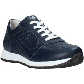 Lage Sneakers NeroGiardini E033810M