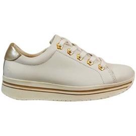 Lage Sneakers Braqeez 419260