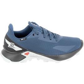 Lage Sneakers Salomon Alphacross Blast CSWP Jr Noir