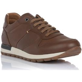 Lage Sneakers Kangaroos 1