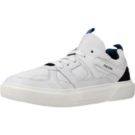 Lage Sneakers Geox J NETTUNO BOY