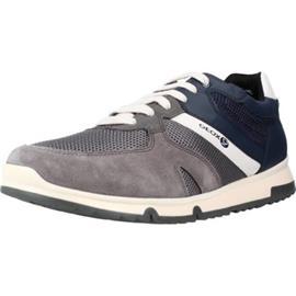 Lage Sneakers Geox U WILMER