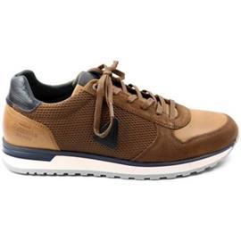 Lage Sneakers Gaastra HEREN sneaker KAI PRISMA M. cognac