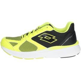 Lage Sneakers Lotto 215679