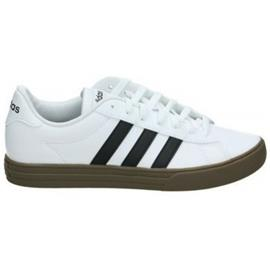 Lage Sneakers adidas DAILY 2.0 F34469
