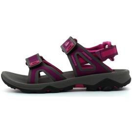 Sandalen The North Face HEDGEHOG SANDAL