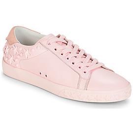 Lage Sneakers Ash DAZED