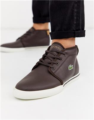 Lacoste - Amptill - Chukka boots in bruin-Marineblauw